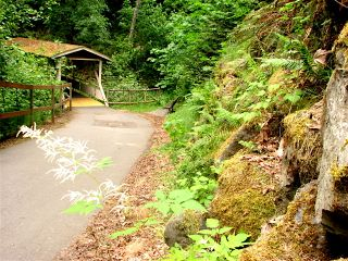 Olympic Discovery Trail, Bagley Creek