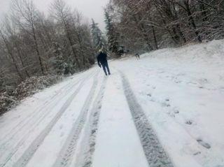 SnowJan2012.1
