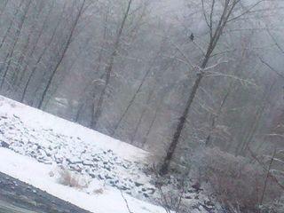 SnowJan2012.4