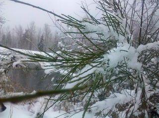 SnowJan2012.5