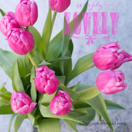 TulipsSimplyLovely